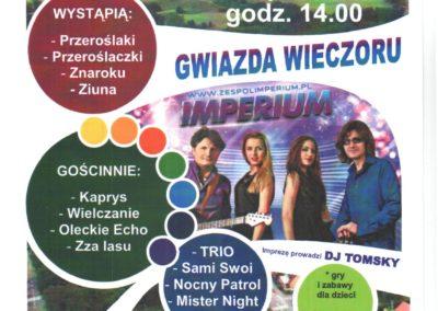 Festyn plakat