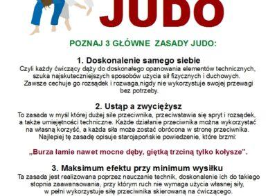 judo plakat